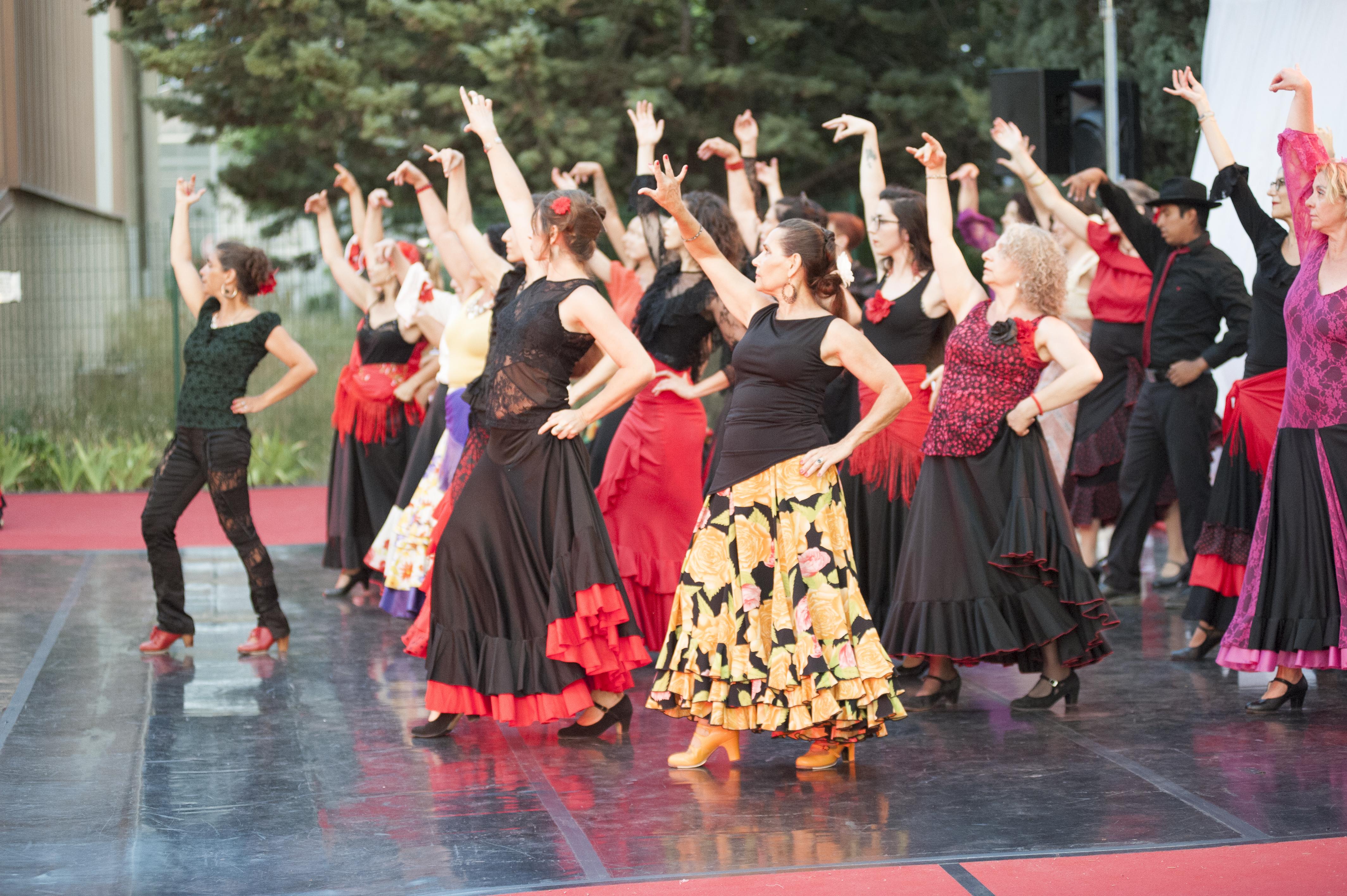 Flamenco (débutant) @ L'Entrepôt Espace Chorégraphique et Culturel