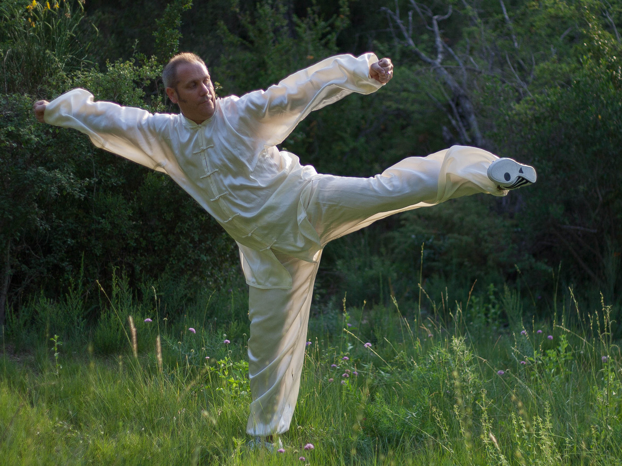 Taiji Quan (en distanciel)